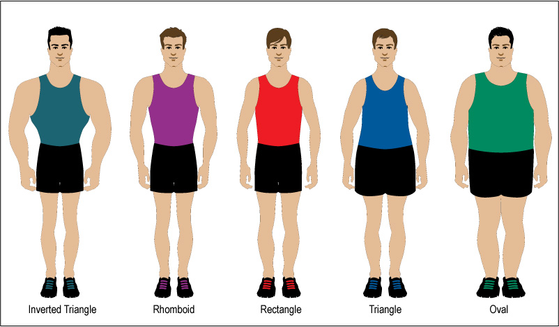 Body Types: Dressing the Male Form